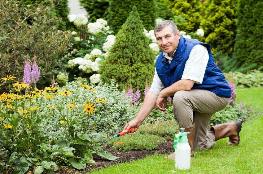 Le tarif d 39 un paysagiste tous sur les prix et des for Electricite exterieur jardin