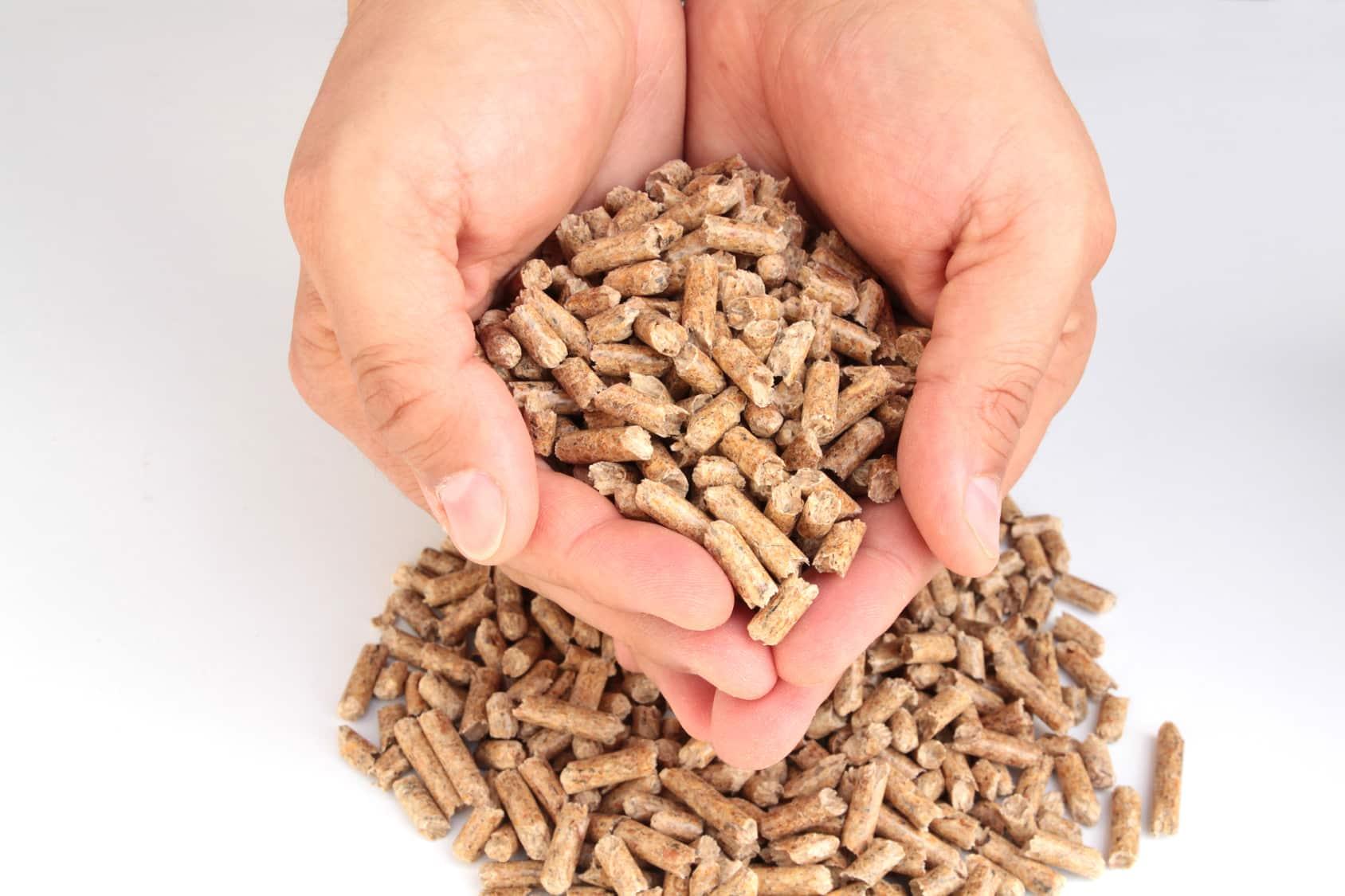 Bien Choisir Granulés De Bois tous les conseils pour bien choisir sa chaudière à granulés