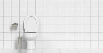 toilette posé
