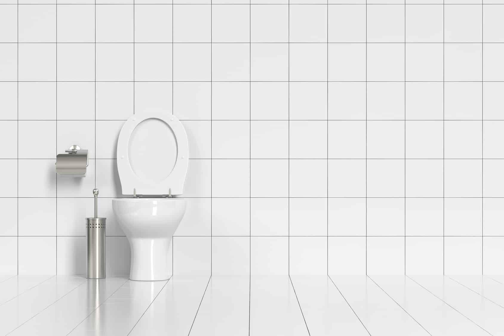 Combien De Wc Dans Une Maison le prix de l'installation de wc : les tarifs et devis