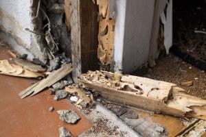 Traitement des termites