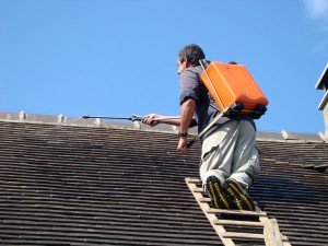 traitement hydrofuge toiture