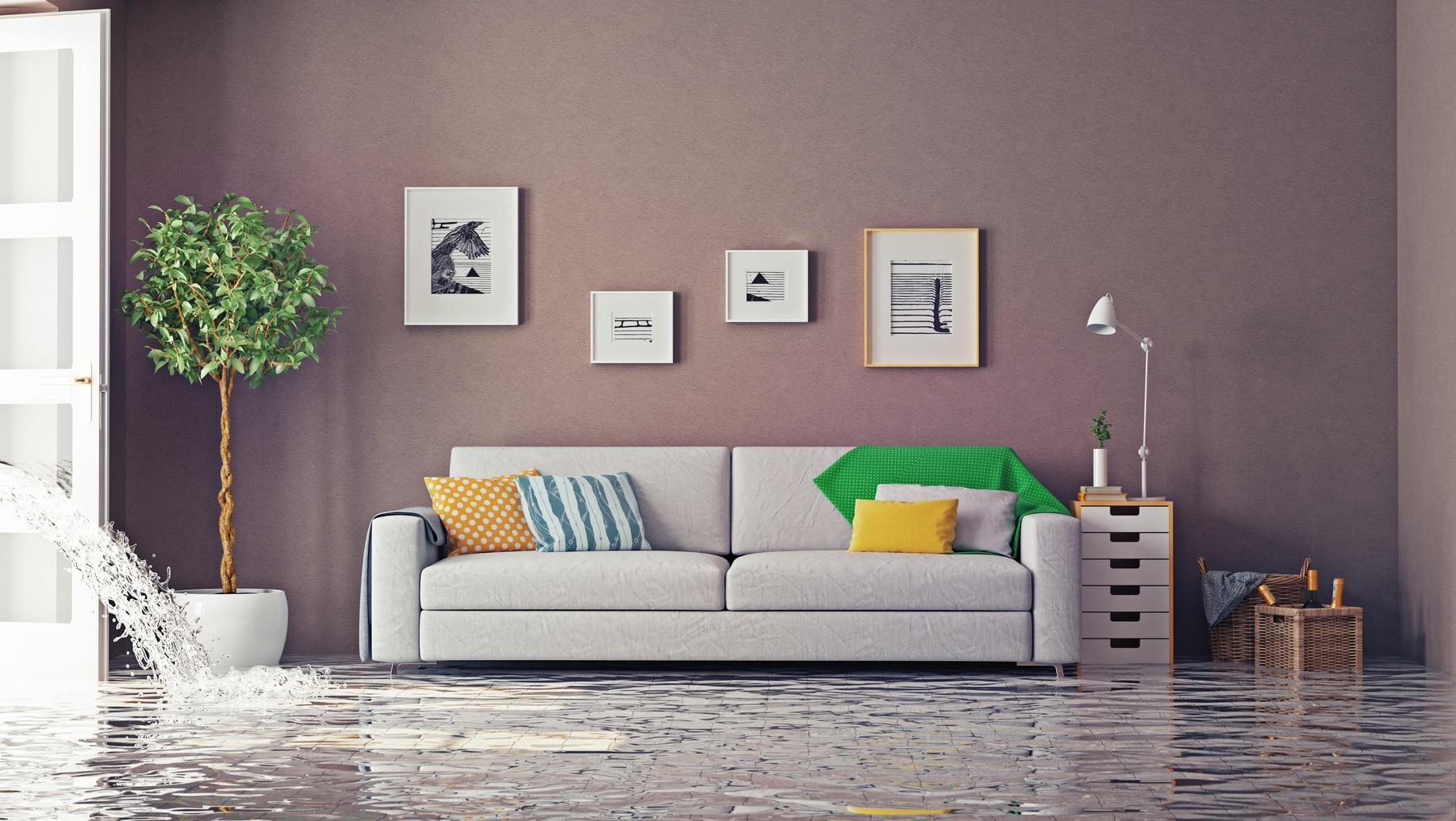 comment r aliser une d claration de sinistre. Black Bedroom Furniture Sets. Home Design Ideas