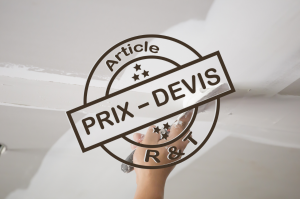 Prix de pose et r novation de plafond et exemple de devis for Prix de la renovation