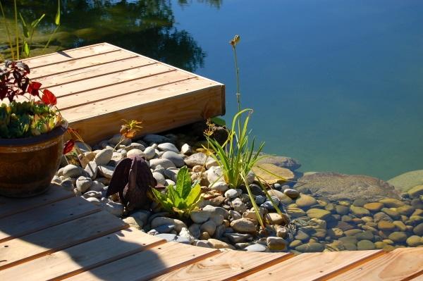 coût d'aménagement d'une piscine naturelle