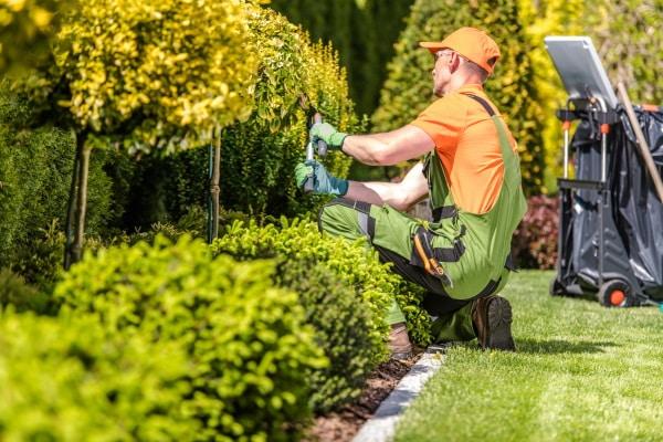 Le prix d'un entretien de jardin