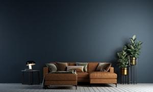 couleur-peinture-salon-contemporain