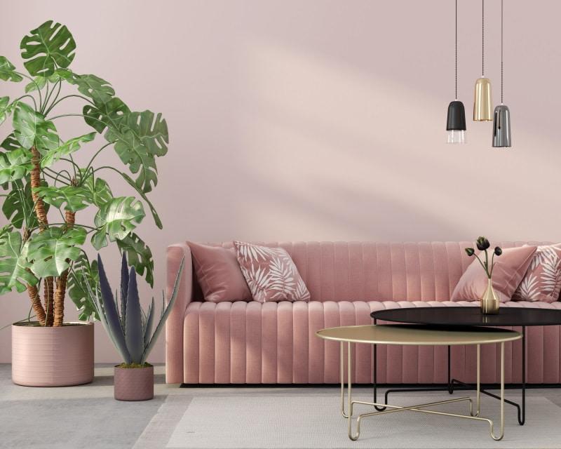 couleur-salon-rose-poudré