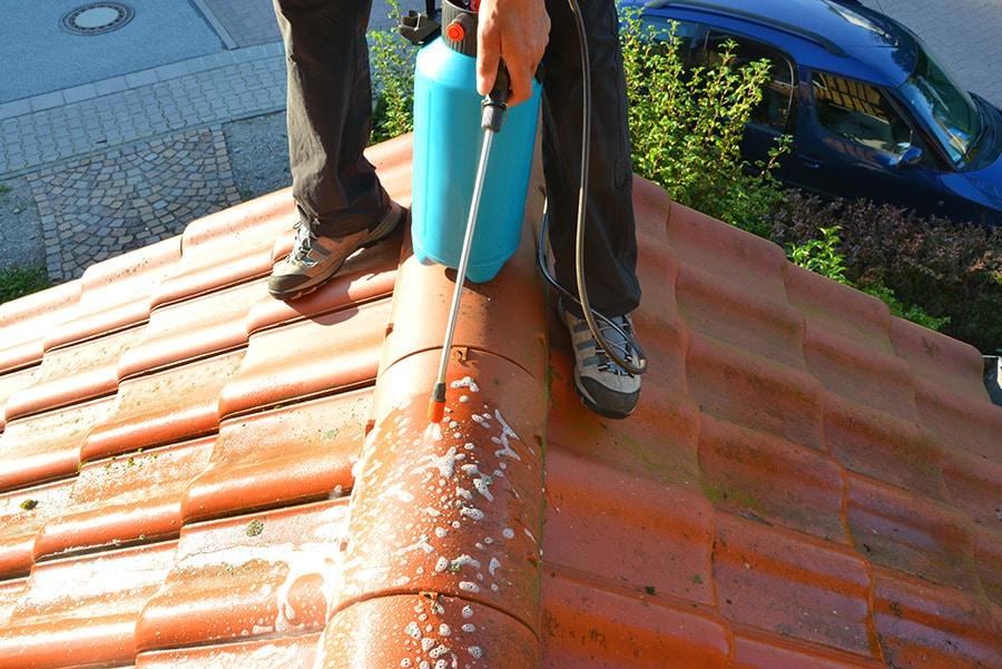 Nettoyage préventif de toiture