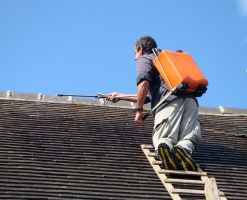 Meilleur produit de nettoyage d'une toiture