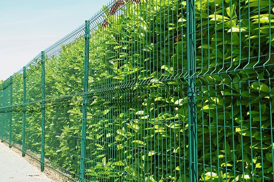 Coût d'une clôture grillage