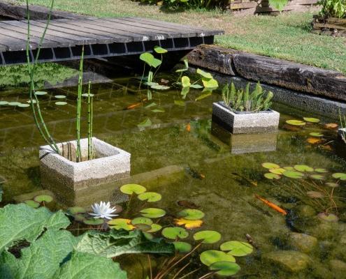 Comment réaliser l'aménagement d'un bassin de jardin ?
